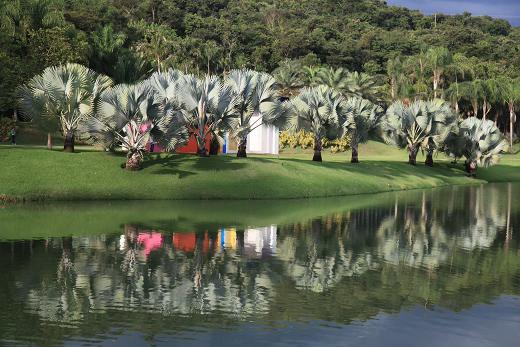 Jardim Botânico de Inhotim